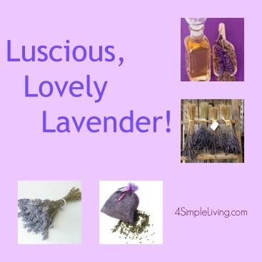 Lavender Collage